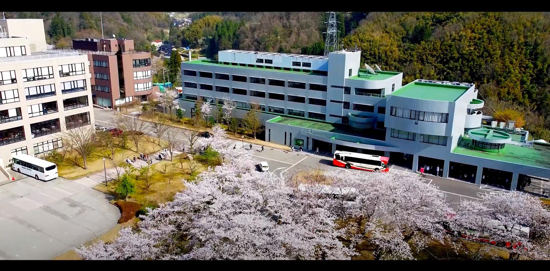 桜満開のキャンパス2021